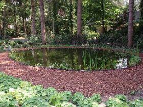 Gorssel 2008 for Natuurlijke vijver zonder pomp